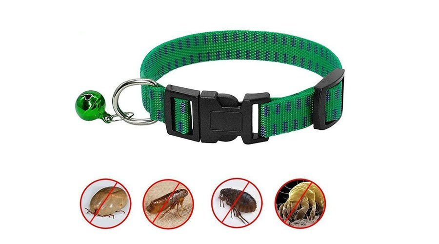 Best Flea and Tick dog collars