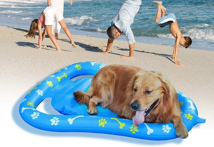 Aiseve Premium Dog Float